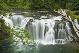 Lower Lewis Falls  Lewis River  Cougar  Washington  Usa
