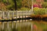 Bridge  Crystal Springs Lake  Rhododendron Garden  Portland  Oregon