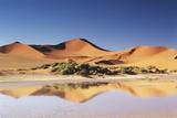 Namibia  Sossusvlei Region  Sand Dunes at Desert