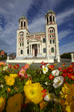 Sacred Heart Basilica and Flowers  South Canterbury  New Zealand