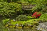 Moon Bridge in Spring  Portland Japanese Garden  Portland  Oregon  Usa