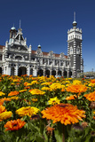 Spring Flowers and Railway Station  Dunedin  South Island  New Zealand