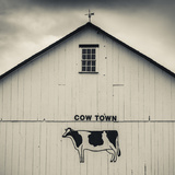 USA  Pennsylvania  Dutch Country  Smoketown  Barn with Cow Art