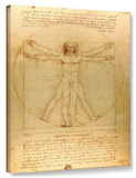 Leonardo Da Vinci 'Vitruvian Man' Gallery Wrapped Canvas