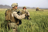 US Marines Patrol Through a Field During a Mission Afghanistan