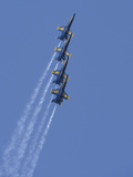 US Navy Flight Demonstration Squadron  the Blue Angels