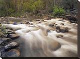 Oak Creek at Grasshopper Point  Sedona  Arizona