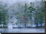 Emerald Lake in fog  Emerald Lake State Park  Vermont