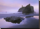 Ruby Beach with seastacks and boulders  Olympic National Park  Washington