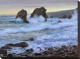 Cove and seastacks near Garrapata State  Beach Big Sur  California