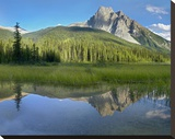Mt Burgess reflected in Emerald Lake  Yoho National Park  British Columbia  Canada