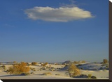 Cloud over White Sands National Monument  Chihuahuan Desert  New Mexico