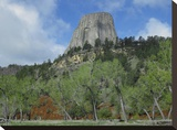 Devil's Tower National Monument showing famous basalt tower  Wyoming