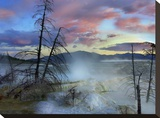Minerva Terrace  Mammoth Hot Springs  Yellowstone National Park  Wyoming