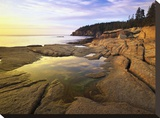 Atlantic coast near Thunder Hole  Acadia National Park  Maine