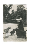 Woman with Three Dogs in a Garden