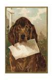 Bloodhound Holding Blank Paper in its Mouth