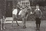 Boys with Donkey and Dog in a Garden