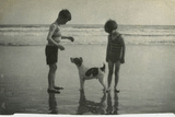 Two Children on Beach with Dog