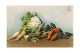 Mixed Vegetables 20C