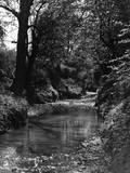 River Lea Tributary
