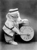 Bone Town Band