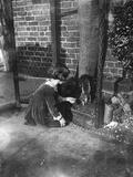 Rescued Squirrel 1932