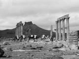 Temple Ruins  Palmyra