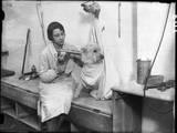 Poodle Parlour 1930s