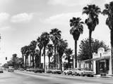 USA  Palm Springs