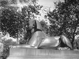 Embankment Sphinx