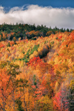 Fall Color Hills at Holderness New Hampshire