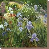 Irises and Oxeye Daisies  1997