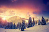 Fantastic Evening Landscape in a Colorful Sunlight Dramatic Wintry Scene National Park Carpathian