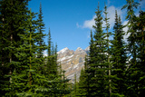 Banff Park Mountain Landscape Photo Print Poster