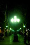 Barcelona Spain Streetlight Photo Print Poster