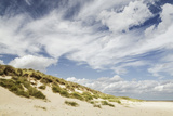 Empty Beach and Dunes with Big Cloudy Sky