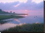 Marsh at sunrise over Eagle Bay  St Joseph Peninsula  Florida