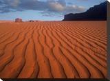 Sand dunes at Monument Valley Navajo Tribal Park  Arizona