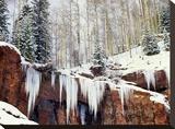Frozen waterfall in winter  San Juan Mountains  Colorado
