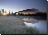 Nisling Range  Yukon Territory  Canada