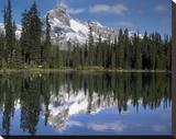 Wiwaxy Peaks and Cathedral Mountain at Lake O'Hara  Yoho National Park  British Columbia  Canada