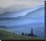 Mist over Absaroka Range  Yellowstone National Park  Wyoming