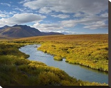 North Klondike River flowing through tundra beneath the Ogilvie Mountains  Yukon Territory  Canada
