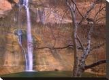Calf Creek Falls cascading down sandstone cliff  Escalante National Monument  Utah