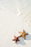 Starfish on Tropical Beach Papier Photo par Mehmed Zelkovic