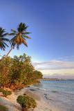 Oistins Beach  Barbados
