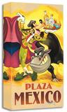 Goofy's Plaza Mexico