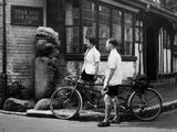 'The Alfriston Lion'