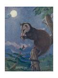 Opossum 1909